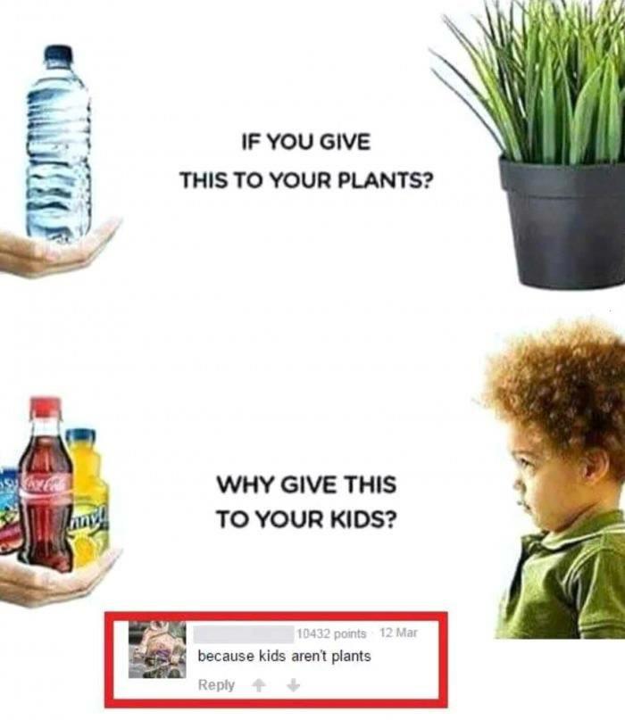 Kids Aren't Plants