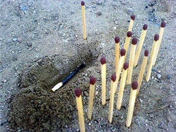 Match burial because matches have feelings too