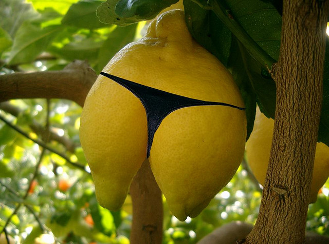 That is one sexy lemon