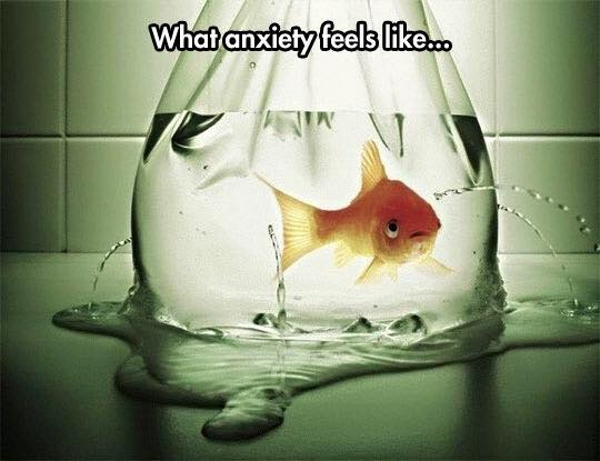 Anxiety Explained