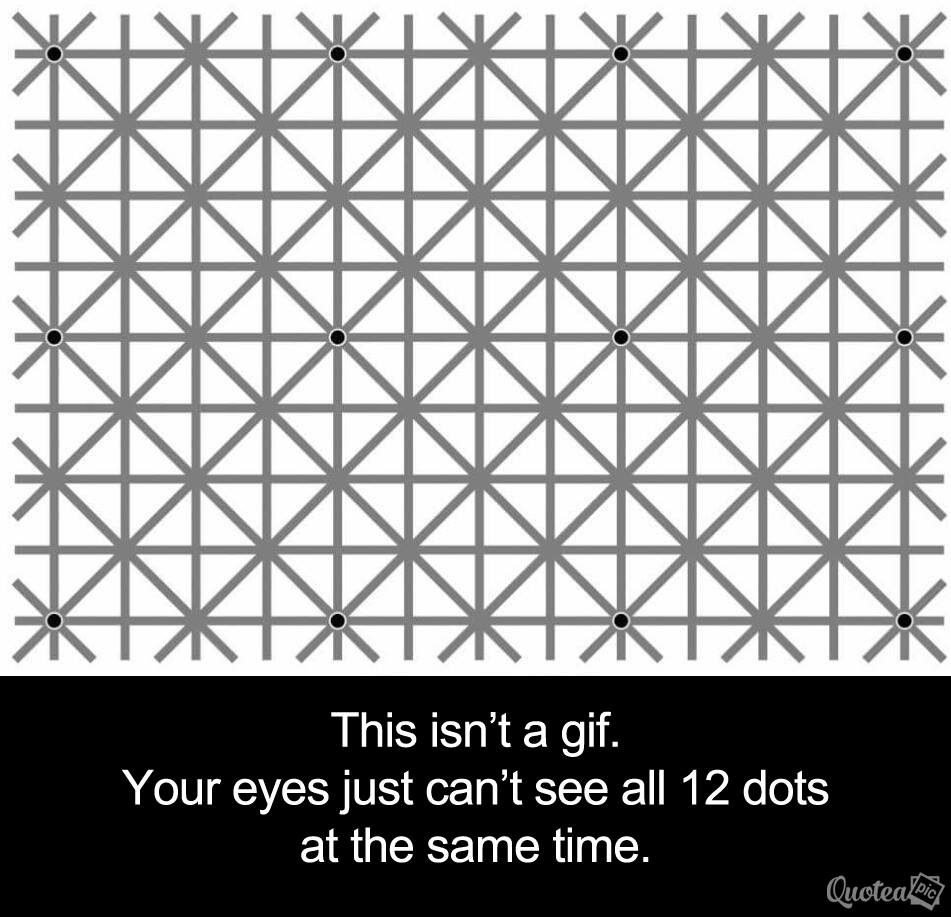 Can You See All 12 Dots At Once ?