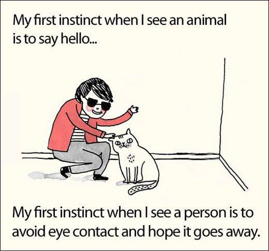 1st Instinct