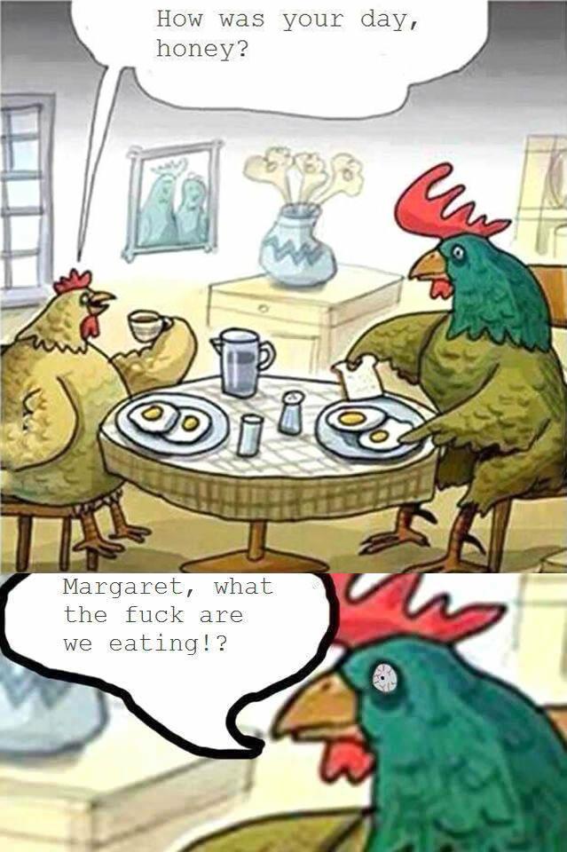 Chicken Cannibalism