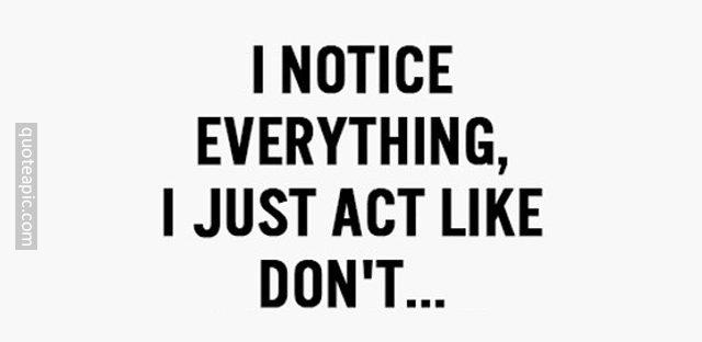 I Notice Everything