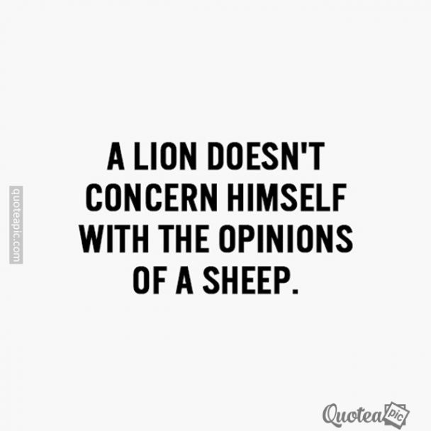Opinions Of A Sheep
