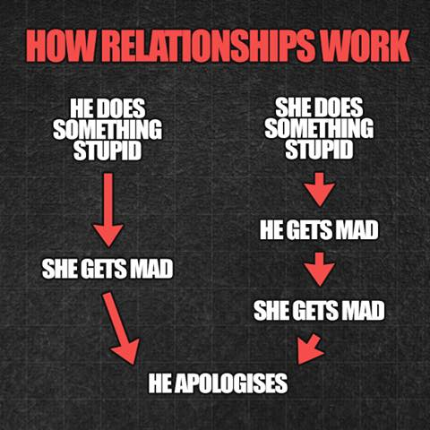 The Life Cycle Of A Relationship
