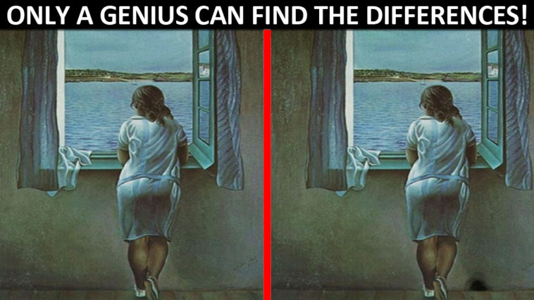 Only Geniuses Are Able To Spot All The Differences In These Images !