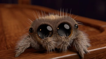 Meet Lucas, The Most Adorable Spider That Will Help You Overcome Your Fear Of Spiders